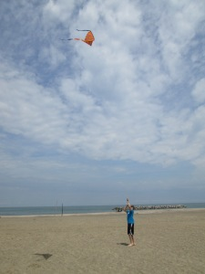 kites 012